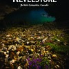 City of Revelstoke 2013 Travel Guide