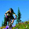 Mountain Biking Trail Map for Revelstoke