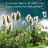 Wild Flower Guide for Mt Revelstoke National Park.