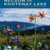 Nelson Kootenay Lake area summer & winter.