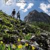 Fernie Summer Guide