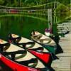 Columbia Wetlands Adventures
