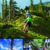 Fernie Hiking & Biking Trail Map