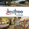Red Tree Lodge, 3-star accommodation in Fernie.